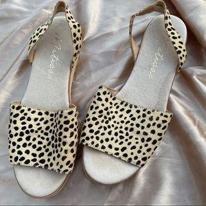 Matisse Easy Sandals in Cheetah